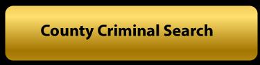 county criminal search button